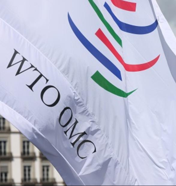 El impacto de la OMC en el desempeño exportador de Argentina