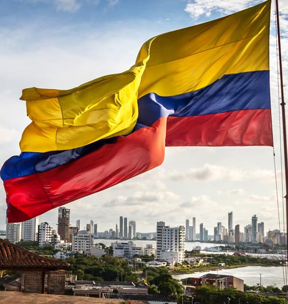 Análisis, estudio y caracterización de las Agencias de Desarrollo Local en Colombia. El caso de la Asociación Agencia para el desarrollo del Pacífico Sur