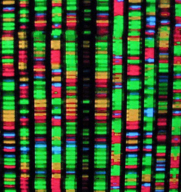 La Bioinformática y la Biología de Sistemas