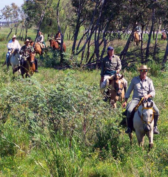 Turismo para personas mayores. El caso de Victoria, Entre Ríos, Argentina