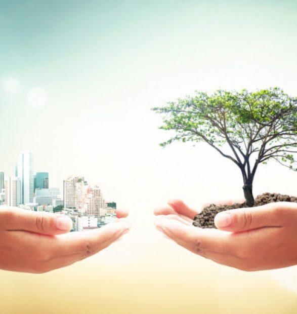 Necesidad de repensar los objetivos del desarrollo